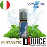 Mintastic Aroma Concentrato 10ML ITALIA