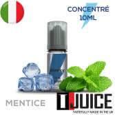 Mentice Aroma Concentrato 10ML ITALIA