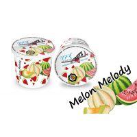 Melon Melody 120g - Ice Frutz