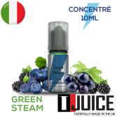 Green Steam Aroma Concentrato 10ML ITALIA